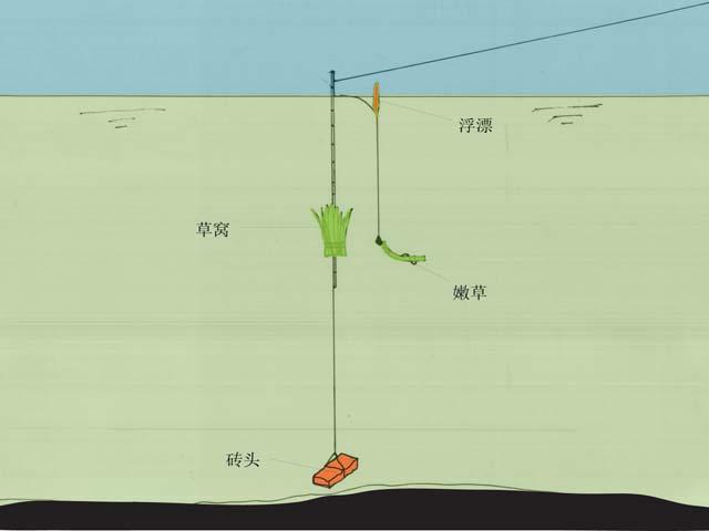 台钓起杆方法图解